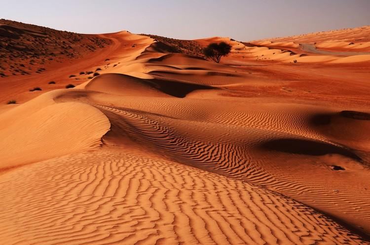 Oman_deserto_10