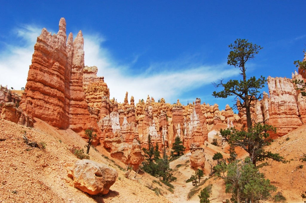 US_Bryce_Canyon_30095