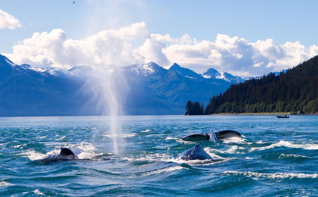 US_Alaska_Generico_002