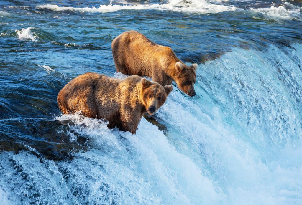 US_Alaska_Generico_006