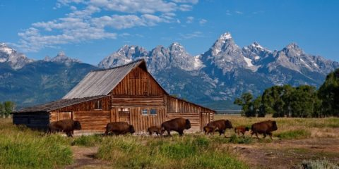 Montana North e South Dakota Wyoming